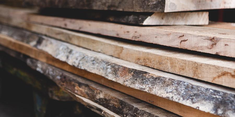 古琴的木材