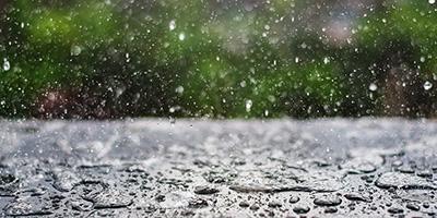 雨季,在潮湿的环境下如何养护古琴?